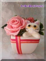 白猫アレンジ(ピンクA)